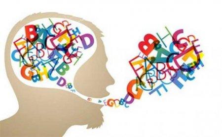 اظهارنامه مالیات عملکرد آموزشگاه زبان جزء مشاغل ارسال شده
